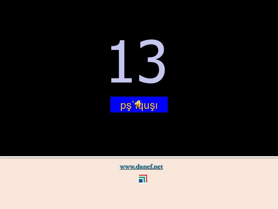 www.danef.net 12 12 pş`ıqu ṫ `u