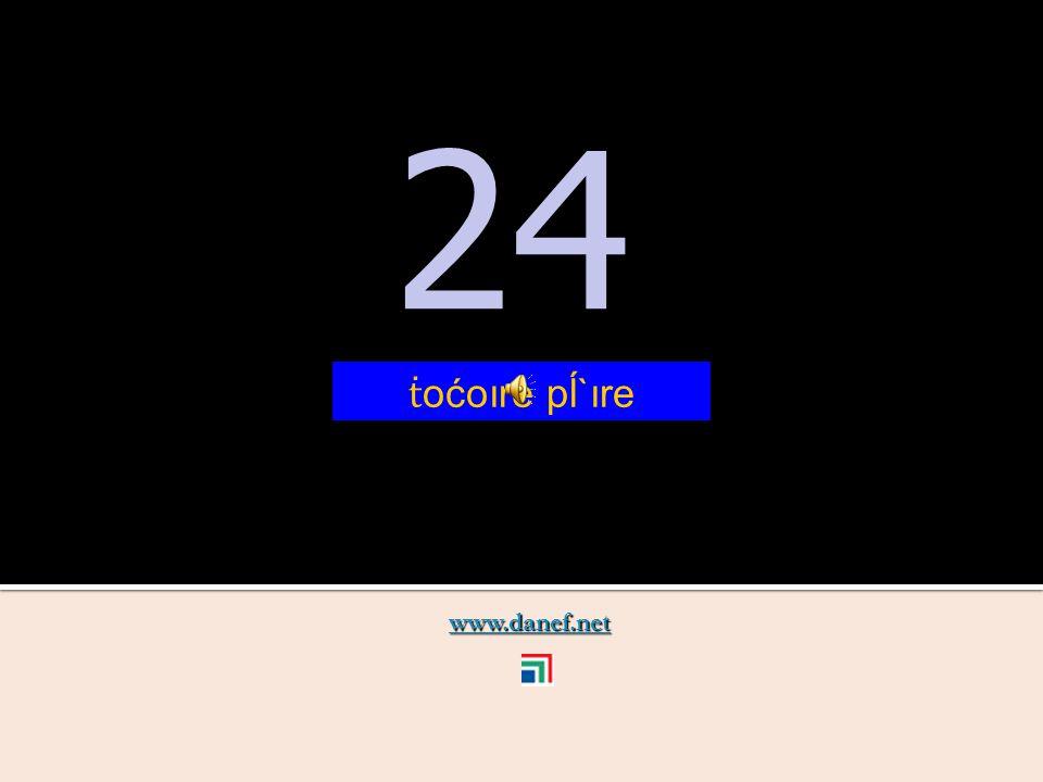 www.danef.net 23 23 ṫ oćoıre ş`ıre