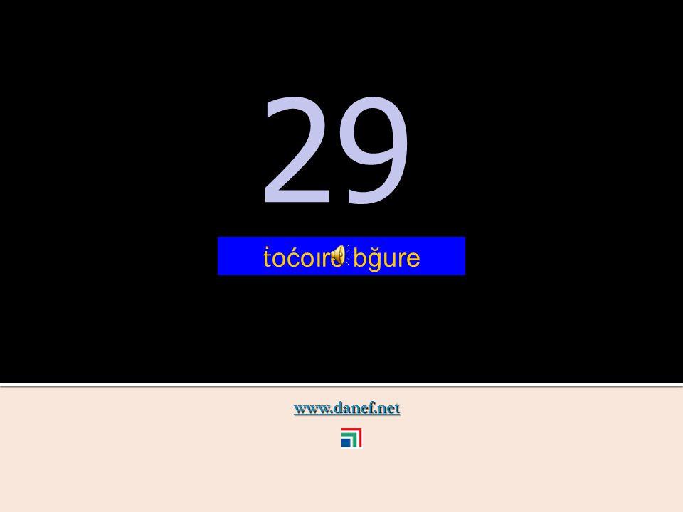 www.danef.net 28 28 ṫ oćoıre yire