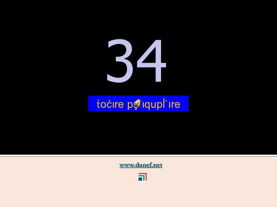 www.danef.net 33 33 ṫ oćoıre ć`ıquşre