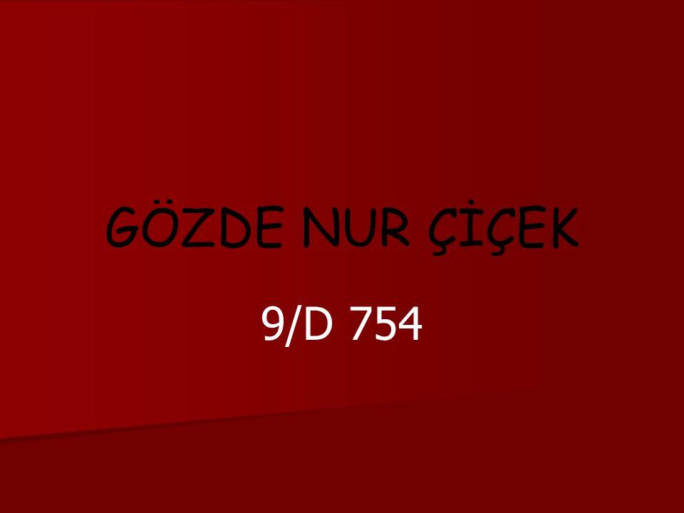 GÖZDE NUR ÇİÇEK 9/D 754