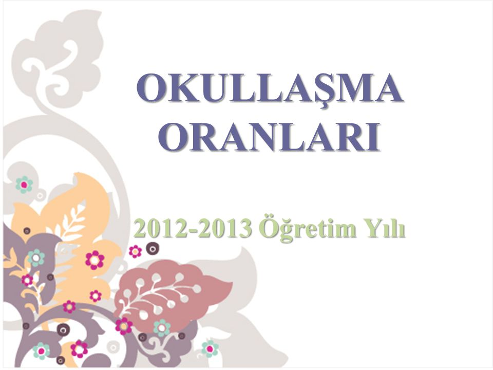 OKULLAŞMA ORANLARI 2012-2013 Öğretim Yılı
