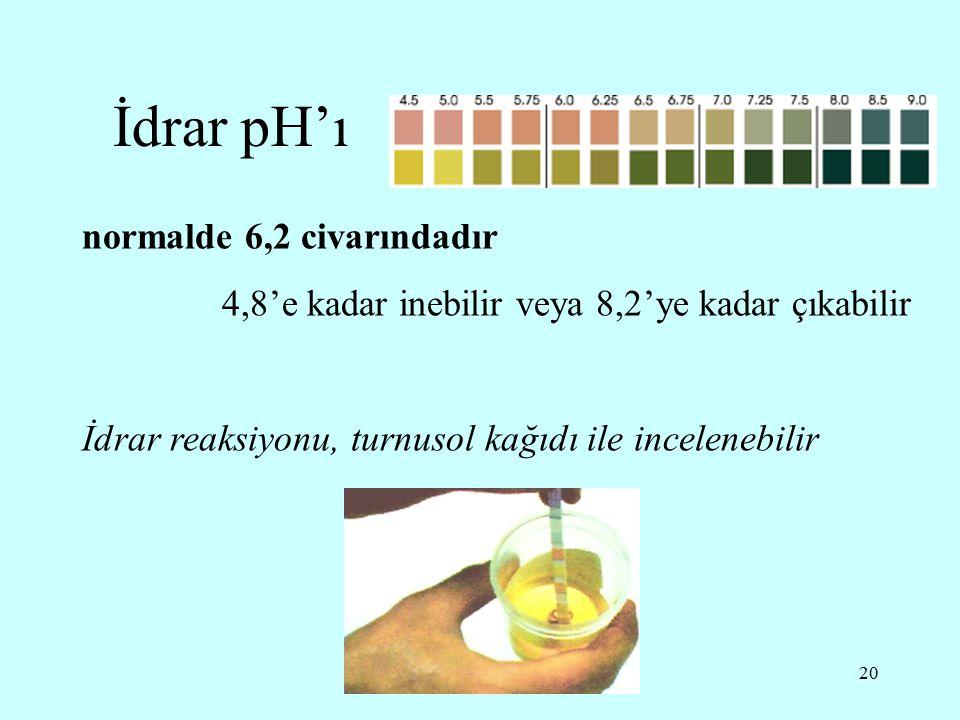 20 İdrar pH'ı normalde 6,2 civarındadır 4,8'e kadar inebilir veya 8,2'ye kadar çıkabilir İdrar reaksiyonu, turnusol kağıdı ile incelenebilir