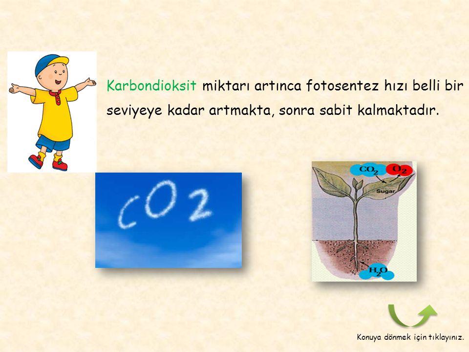 Sizce CO 2 miktarının değişmesi fotosentez hızına nasıl etki eder? Benimle beraber etkinliğe devam etmeye ne dersiniz ? Sonraki sayfa