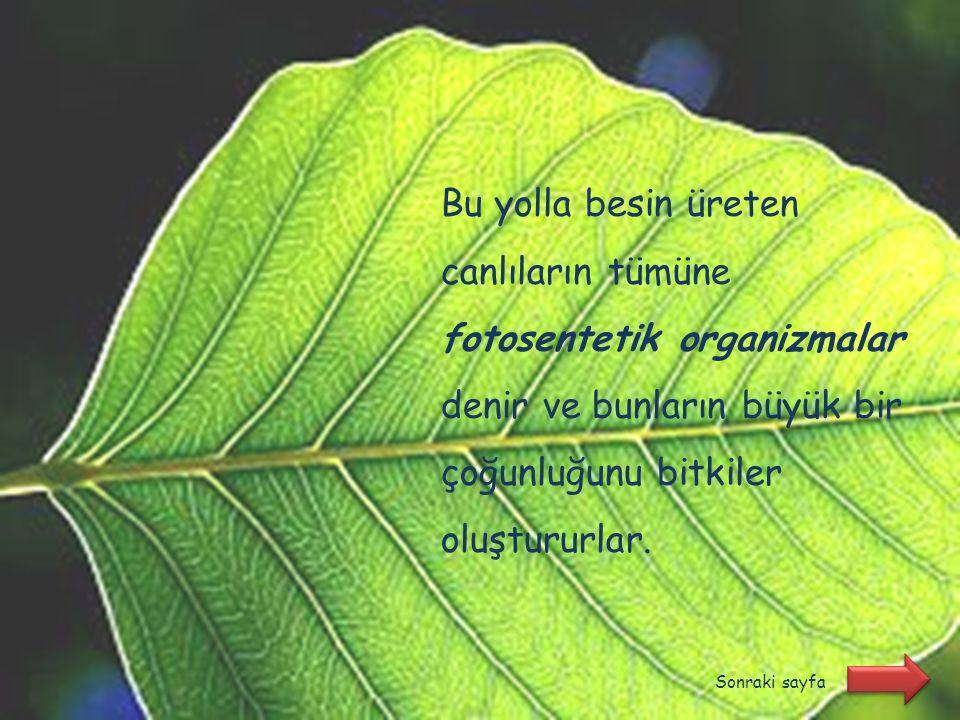Fotosentez, klorofil (kromozomlarda) taşıyan canlılarda ışık enerjisi kullanılarak organik bileşiklerin üretilmesi olayıdır. Sonraki sayfa