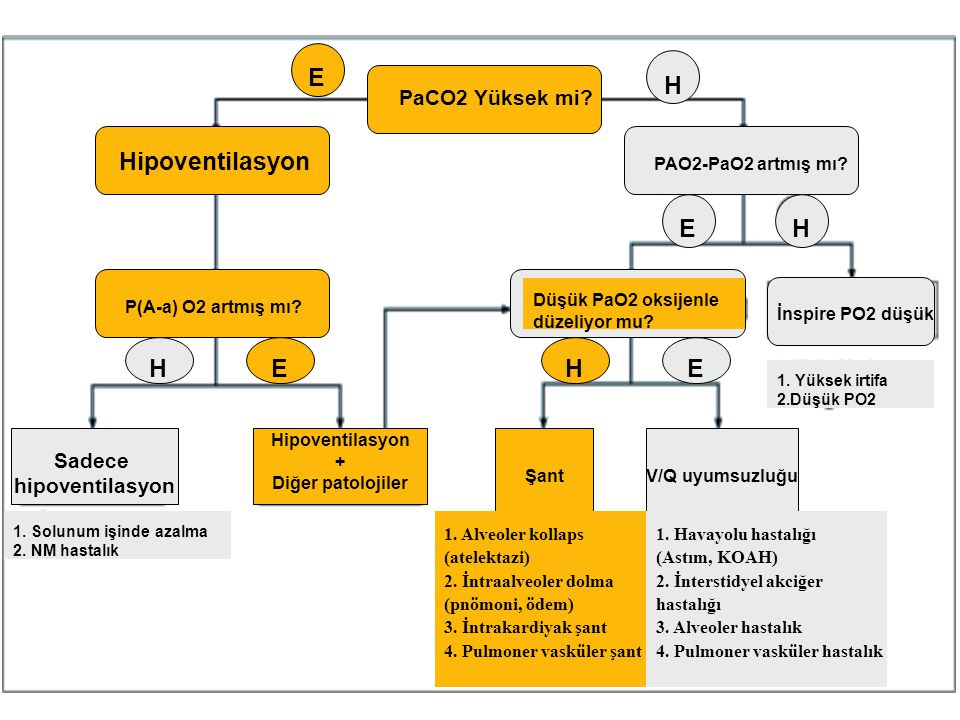 PaCO2 Yüksek mi? E H Hipoventilasyon PAO2-PaO2 artmış mı? E H P(A-a) O2 artmış mı? HEHE Düşük PaO2 oksijenle düzeliyor mu? ŞantV/Q uyumsuzluğu Hipoven