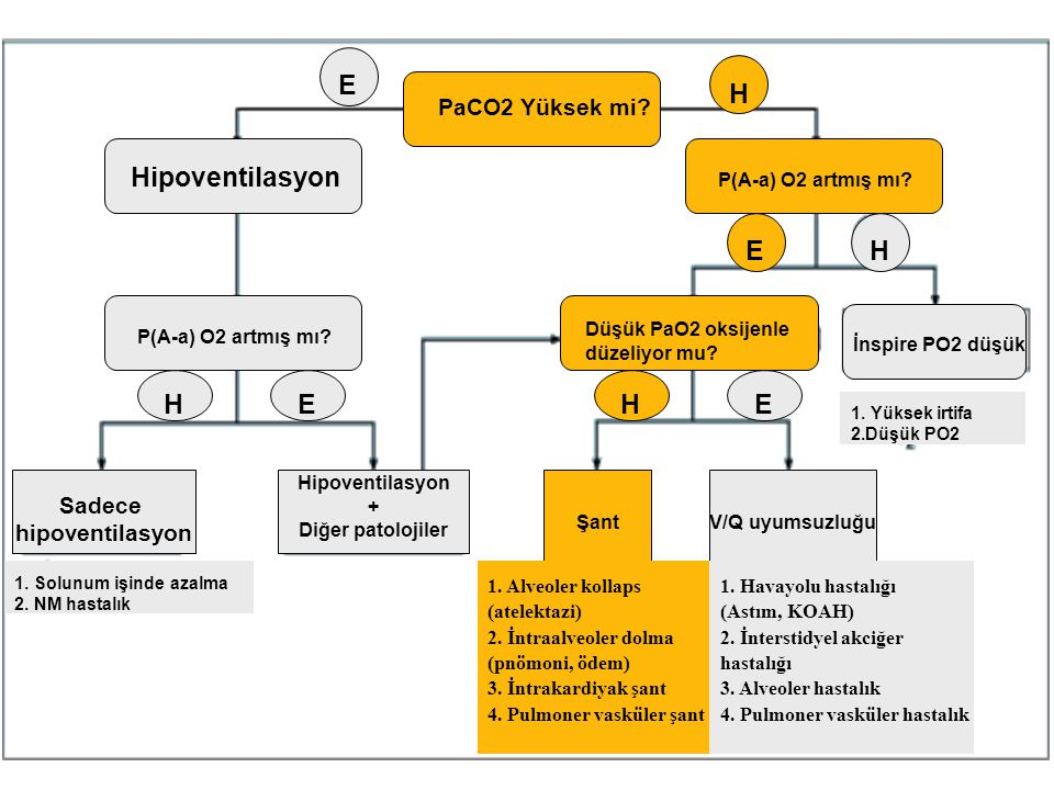 PaCO2 Yüksek mi? E H Hipoventilasyon P(A-a) O2 artmış mı? E H HEHE Düşük PaO2 oksijenle düzeliyor mu? ŞantV/Q uyumsuzluğu Hipoventilasyon + Diğer pato
