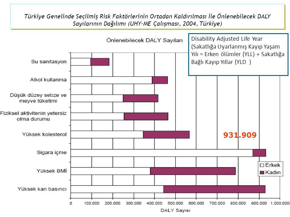 Türkiye Genelinde Seçilmiş Risk Faktörlerinin Ortadan Kaldırılması İle Önlenebilecek DALY Sayılarının Dağılımı (UHY-ME Çalışması, 2004, Türkiye) 931.9