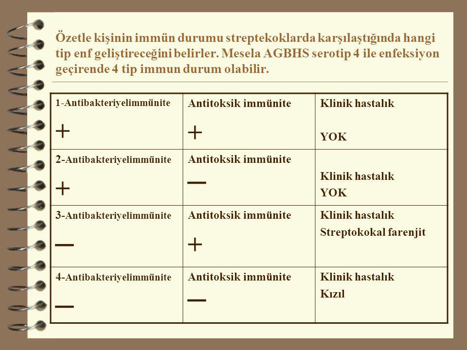 ANTİTOKSİK İMMÜNİTE 4 Antitoksik immünite pasif veya aktif edinilebilir.