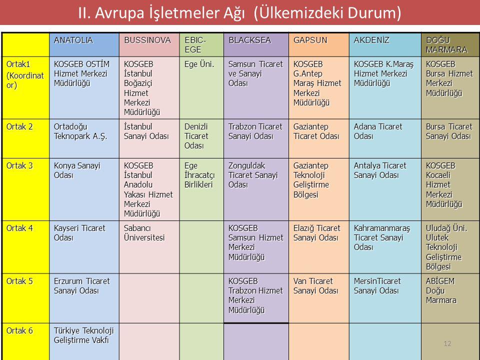 TÜRKİYE'DE İŞ ve YENİLİK DESTEK AĞLARI 13 II.