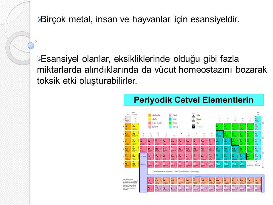 30 civarında metalin insanlarda toksisite oluşturduğu bilinmektedir.