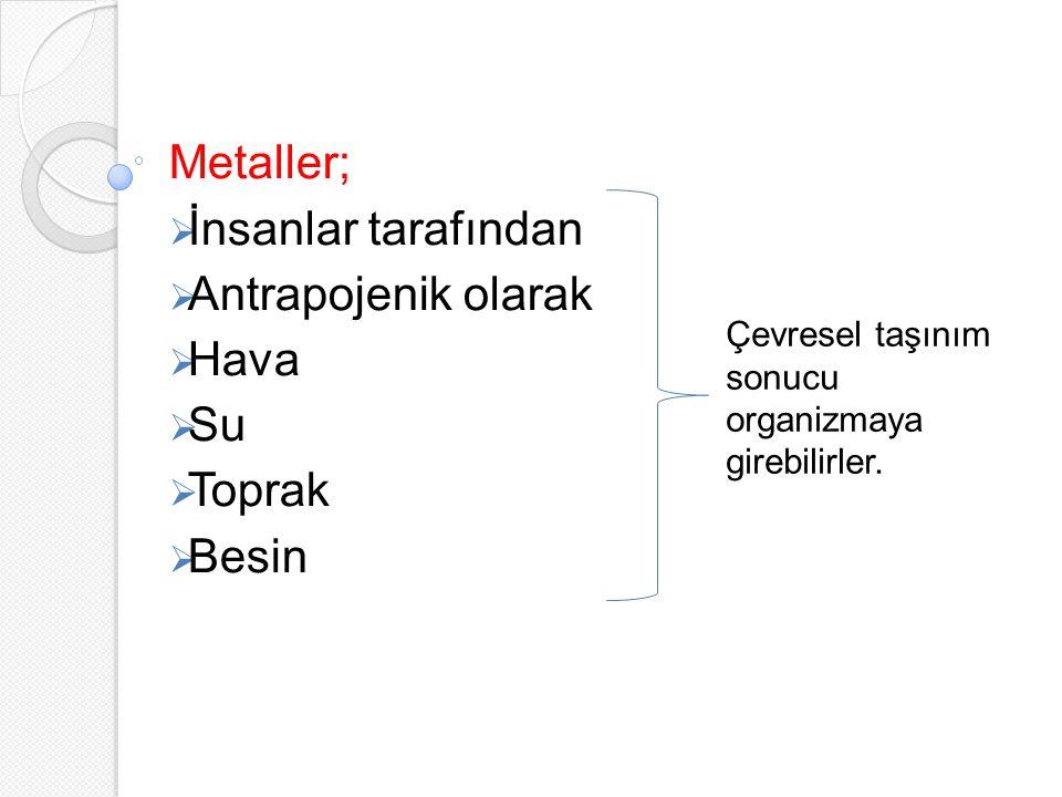 Metaller;  İnsanlar tarafından  Antrapojenik olarak  Hava  Su  Toprak  Besin Çevresel taşınım sonucu organizmaya girebilirler.