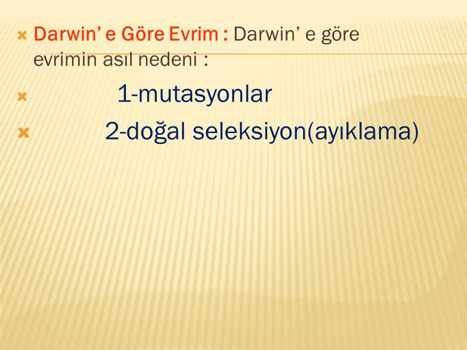  Darwin' e Göre Evrim : Darwin' e göre evrimin asıl nedeni :  1-mutasyonlar  2-doğal seleksiyon(ayıklama)