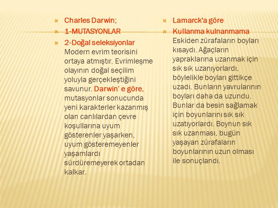  Charles Darwin;  1-MUTASYONLAR  2-Doğal seleksiyonlar Modern evrim teorisini ortaya atmıştır. Evrimleşme olayının doğal seçilim yoluyla gerçekleşt