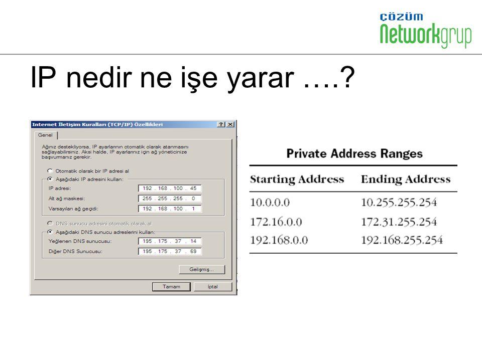 IP' lerin önemi…