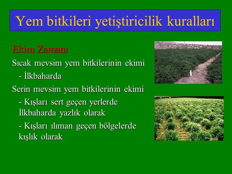 Yem bitkileri yetiştiricilik kuralları Ekim Zamanı Sıcak mevsim yem bitkilerinin ekimi - İlkbaharda Serin mevsim yem bitkilerinin ekimi - Kışları sert