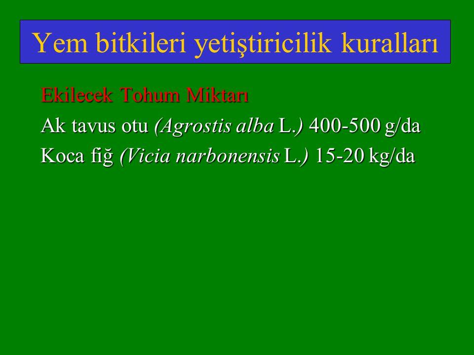 Yem bitkileri yetiştiricilik kuralları Ekilecek Tohum Miktarı Ak tavus otu (Agrostis alba L.) 400-500 g/da Koca fiğ (Vicia narbonensis L.) 15-20 kg/da