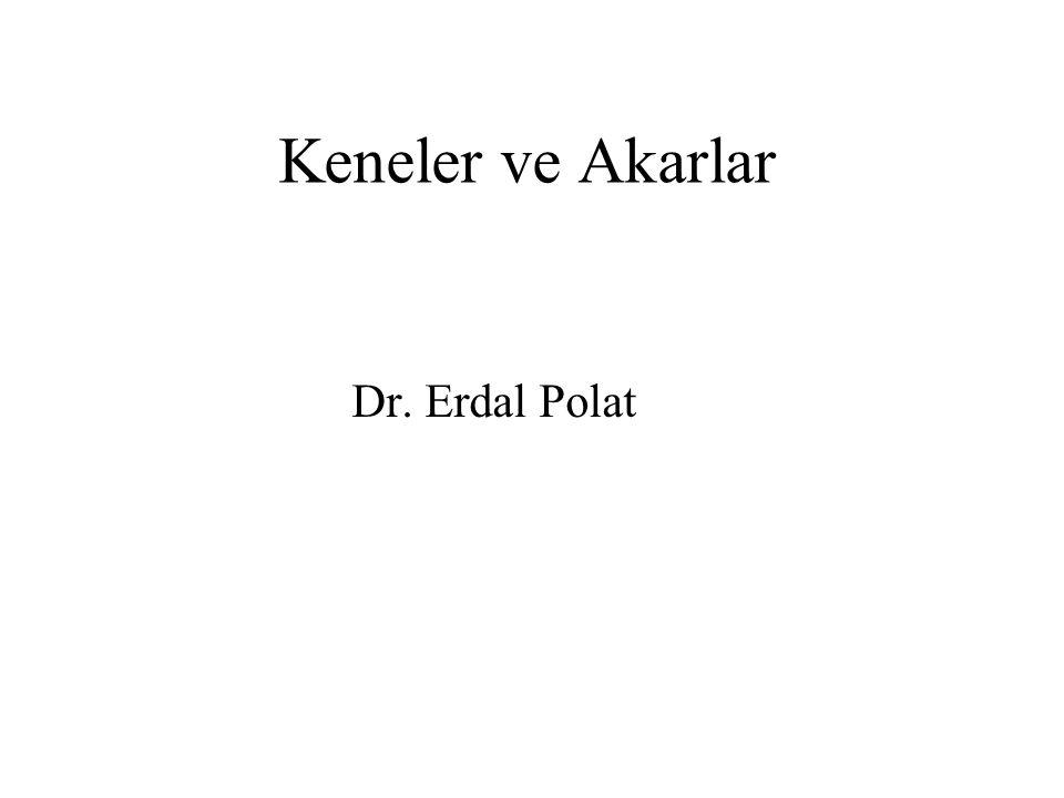 Keneler ve Akarlar Dr. Erdal Polat