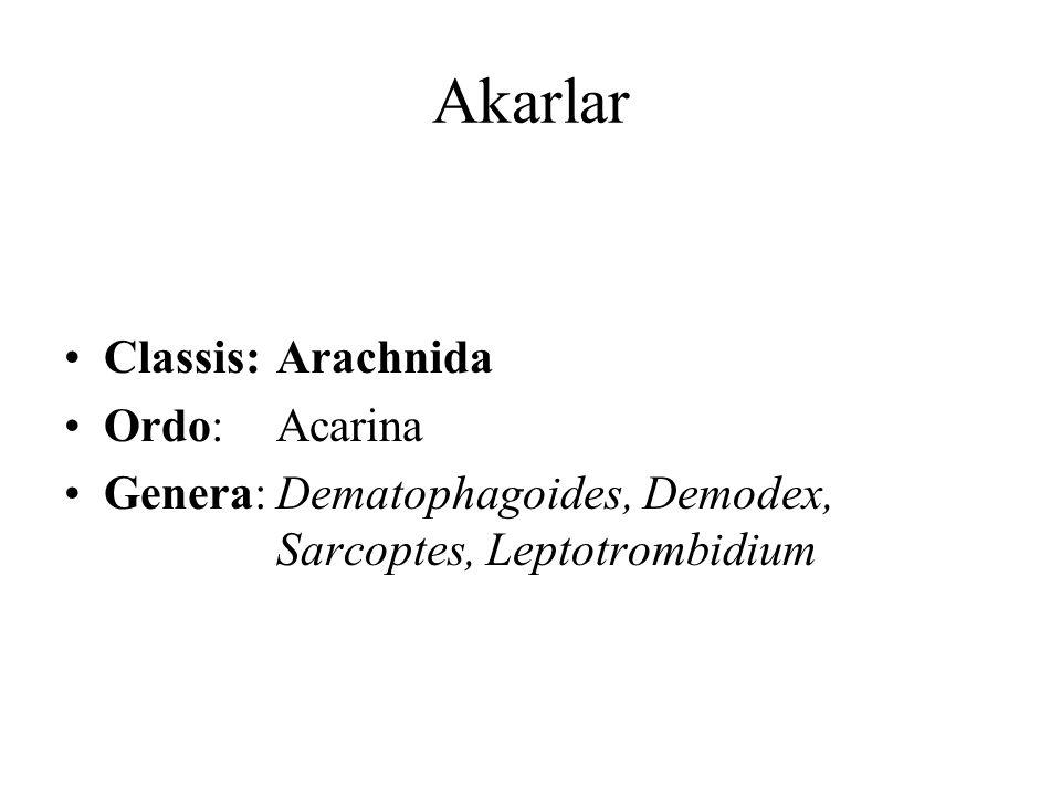 Akarlar Classis:Arachnida Ordo:Acarina Genera:Dematophagoides, Demodex, Sarcoptes, Leptotrombidium