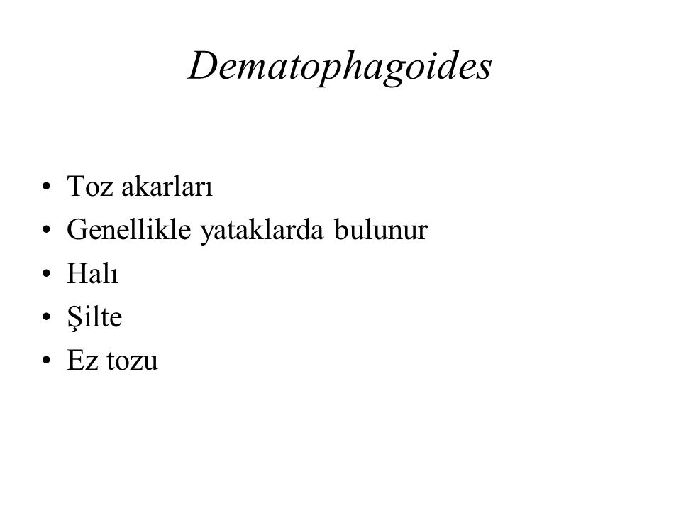 Dematophagoides Toz akarları Genellikle yataklarda bulunur Halı Şilte Ez tozu