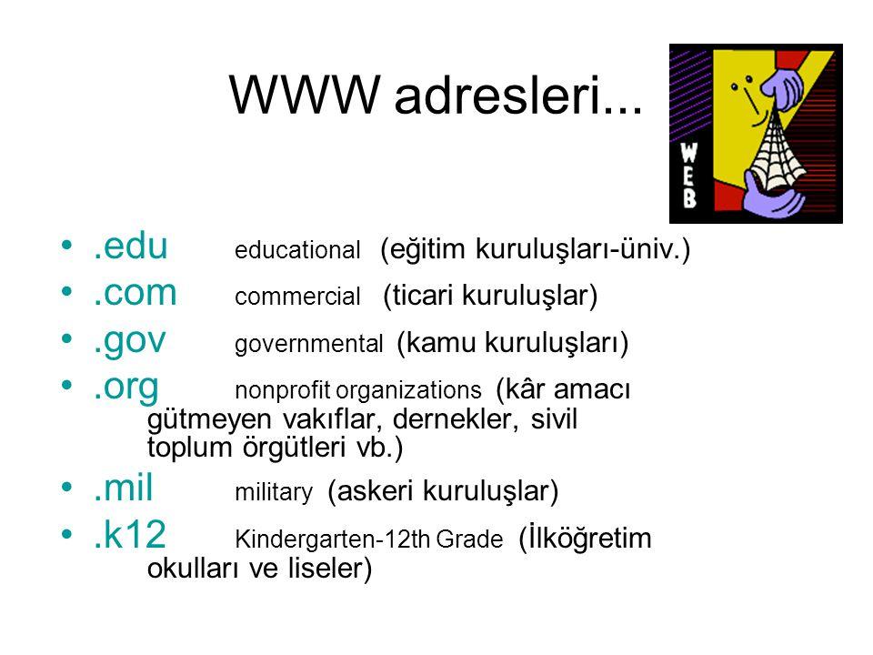 WWW adresleri....edu educational (eğitim kuruluşları-üniv.).com commercial (ticari kuruluşlar).gov governmental (kamu kuruluşları).org nonprofit organ