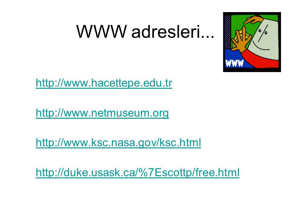 WWW adresleri... http://www.hacettepe.edu.tr http://www.netmuseum.org http://www.ksc.nasa.gov/ksc.html http://duke.usask.ca/%7Escottp/free.html