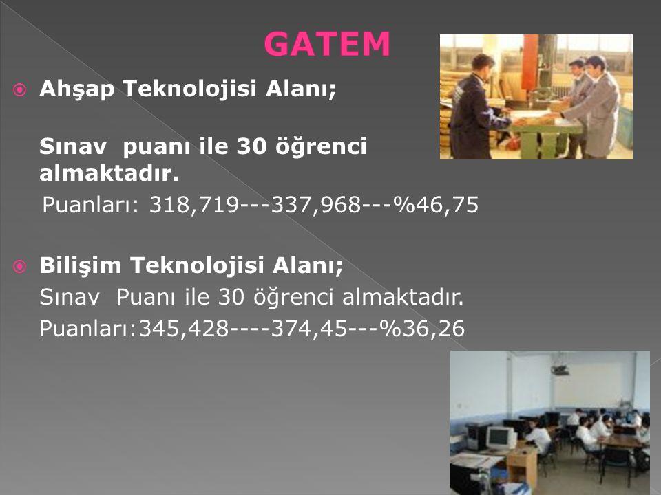  Ahşap Teknolojisi Alanı; Sınav puanı ile 30 öğrenci almaktadır. Puanları: 318,719---337,968---%46,75  Bilişim Teknolojisi Alanı; Sınav Puanı ile 30