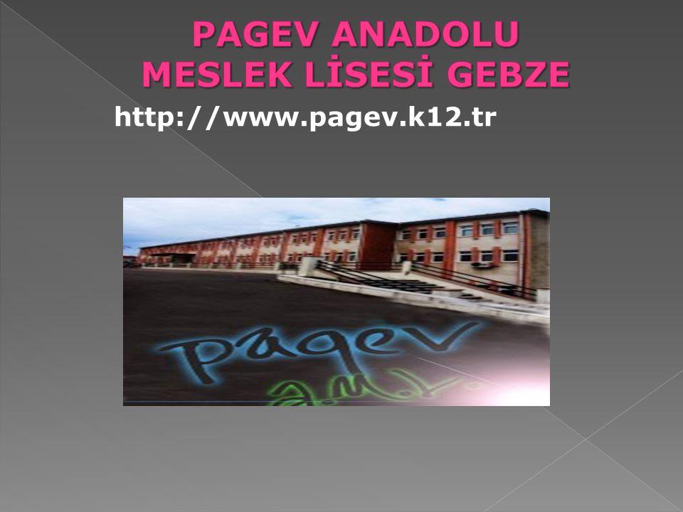 http://www.pagev.k12.tr