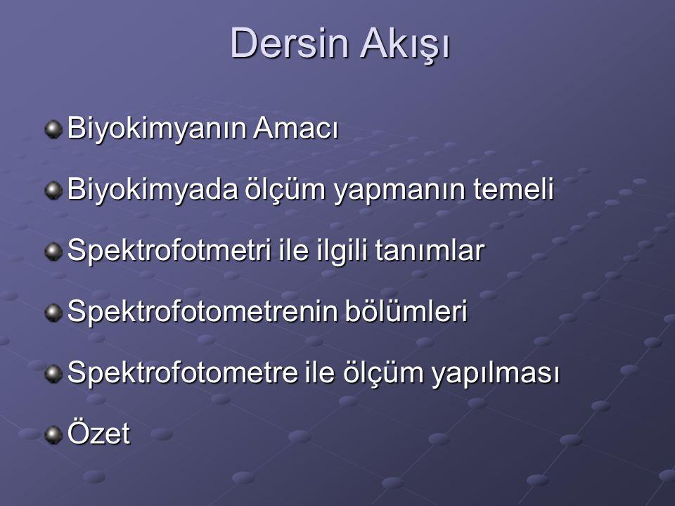 TEMEL BİLİMLER