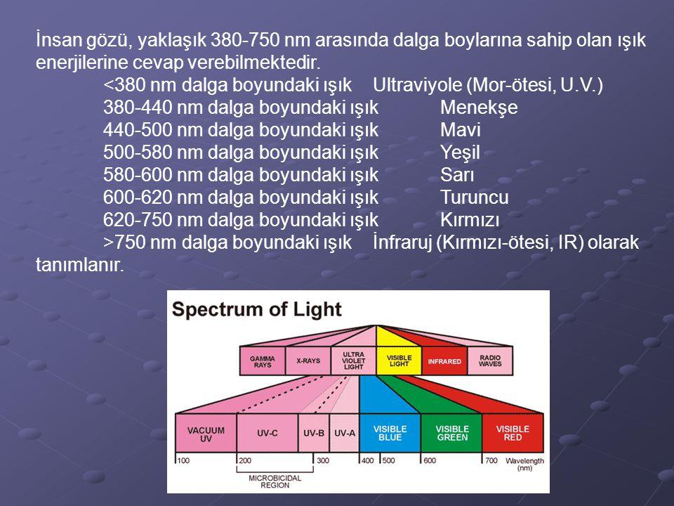 İnsan gözü, yaklaşık 380-750 nm arasında dalga boylarına sahip olan ışık enerjilerine cevap verebilmektedir. <380 nm dalga boyundaki ışık Ultraviyole