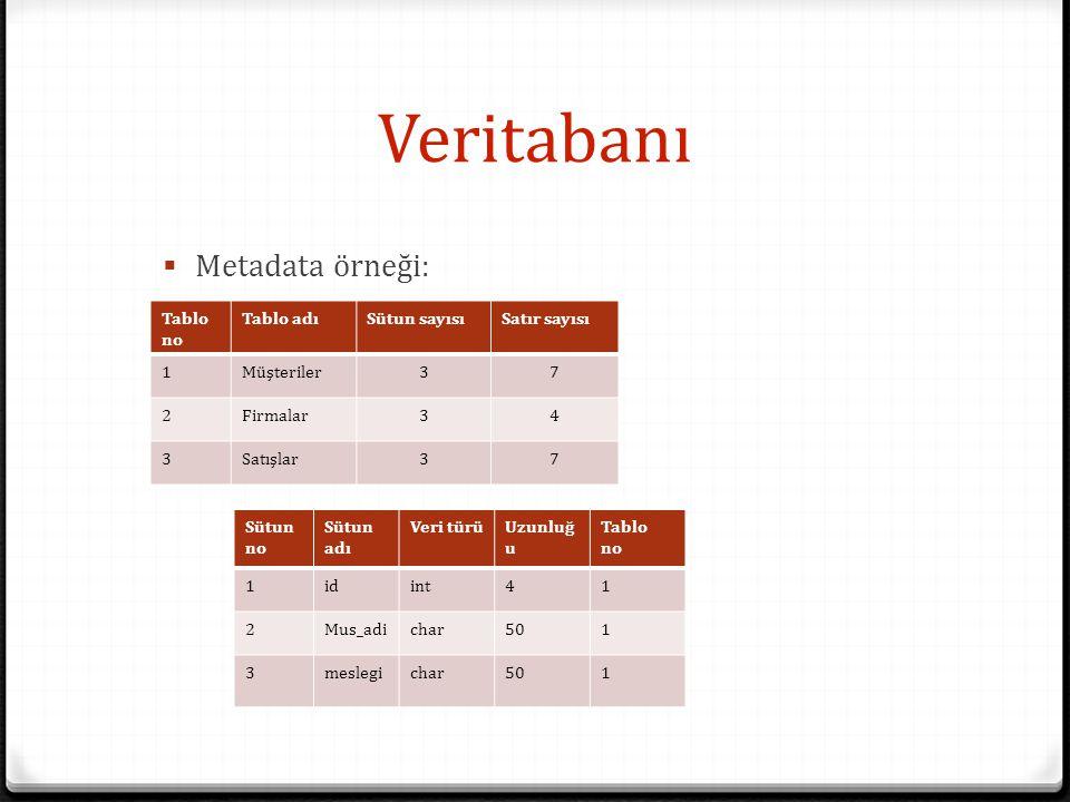 Veritabanı  Metadata örneği: Tablo no Tablo adıSütun sayısıSatır sayısı 1Müşteriler37 2Firmalar34 3Satışlar37 Sütun no Sütun adı Veri türüUzunluğ u T