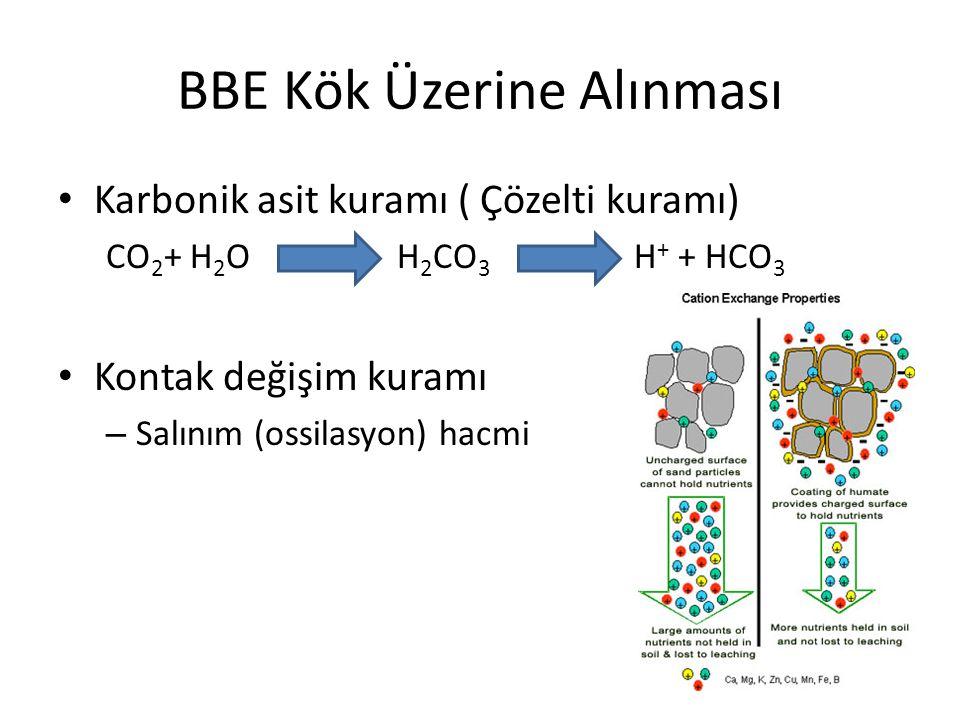BBE Kök Üzerine Alınması Karbonik asit kuramı ( Çözelti kuramı) CO 2 + H 2 O H 2 CO 3 H + + HCO 3 Kontak değişim kuramı – Salınım (ossilasyon) hacmi