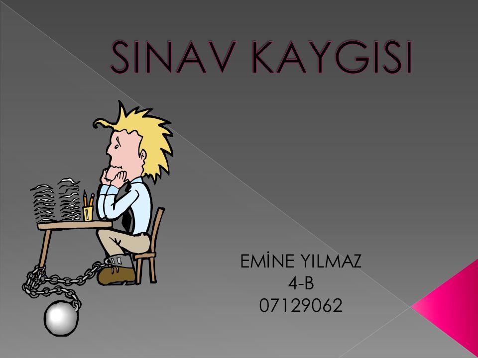 EMİNE YILMAZ 4-B 07129062