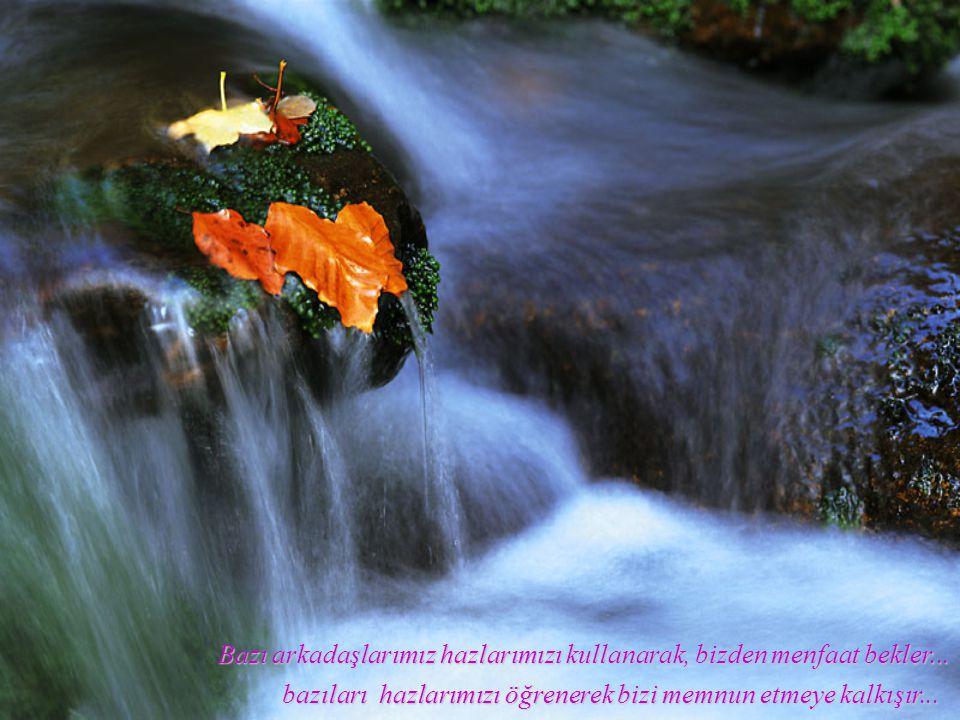 Bazı arkadaşlarımız zayıflıklarımızı görür başımıza kakınç eder... bazıları da zayıflıklarımızı bilir, örtmeye çalışır...