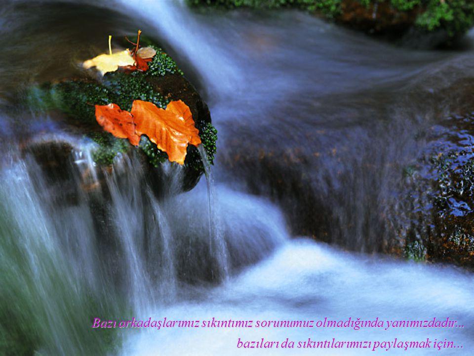 Bazı arkadaşlarımız bizi ortak olduğumuz her amaçta ikinci görmek ister... bazıları ise omuzlarına çıkarır, ikincimiz olmaktan şeref duyar...