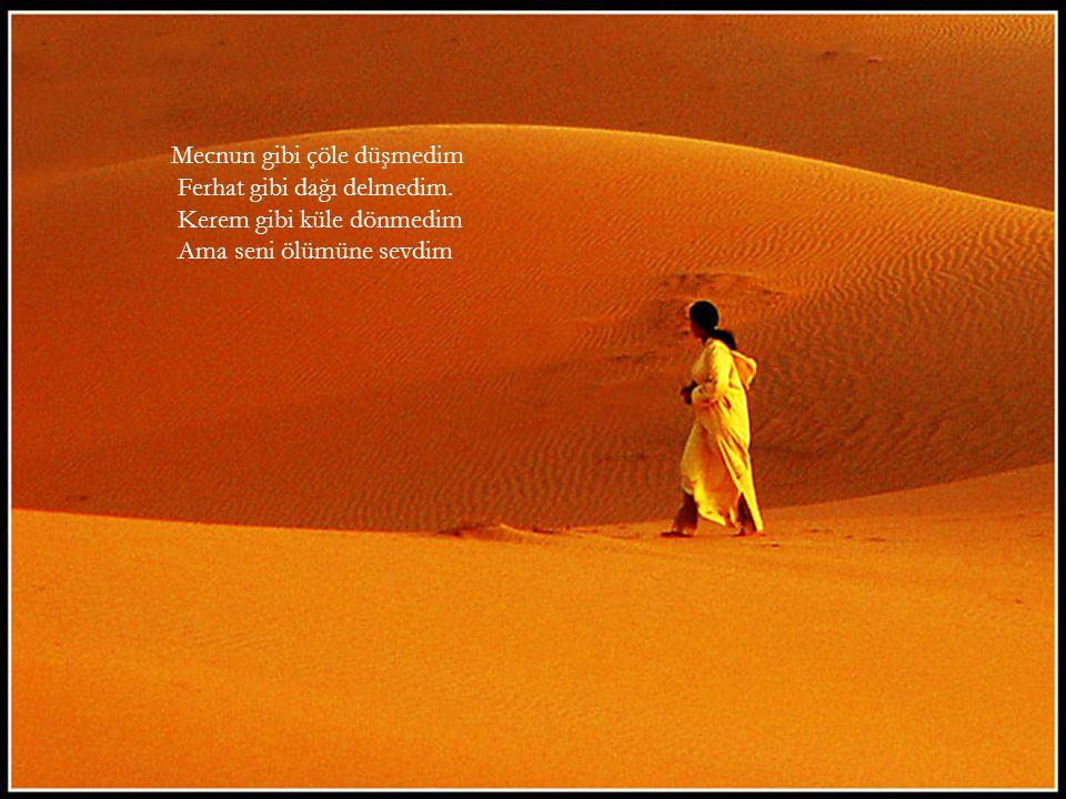 Mecnun gibi çöle düşmedim Ferhat gibi dağı delmedim. Kerem gibi küle dönmedim Ama seni ölümüne sevdim