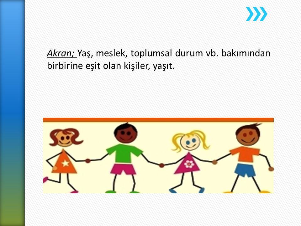 Türkiye'deki Uygulama Örnekleri; Akran Danışmanlığı Eğitim Projesi – Sakarya Akran Danışmanlık Hizmeti – Yeditepe Üniversitesi Akran Danışmanlık Hizmeti - İstanbul Üniversitesi Akran Danışmanlık Hizmeti ve Etkililiğinin İncelenmesi – Ege Üniversitesi