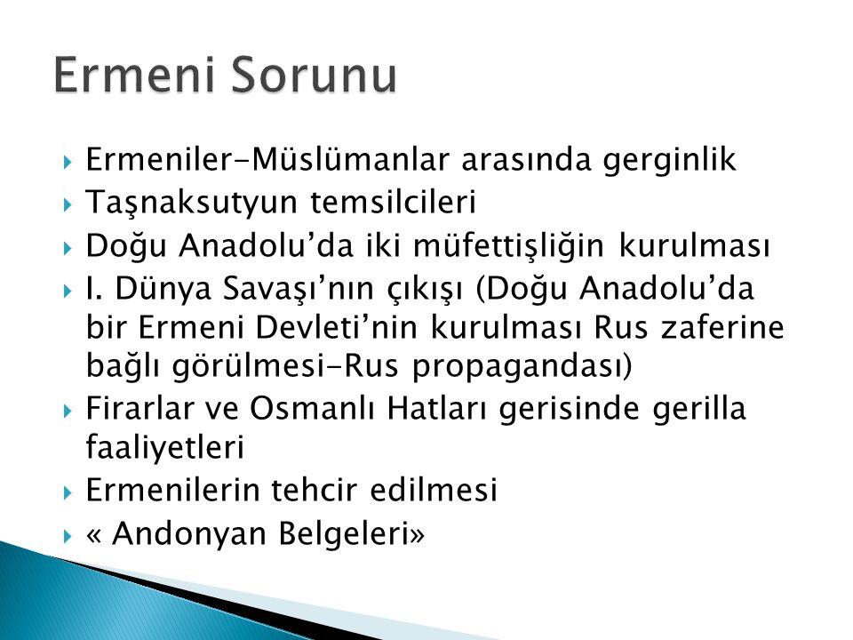 Ermeniler-Müslümanlar arasında gerginlik  Taşnaksutyun temsilcileri  Doğu Anadolu'da iki müfettişliğin kurulması  I.