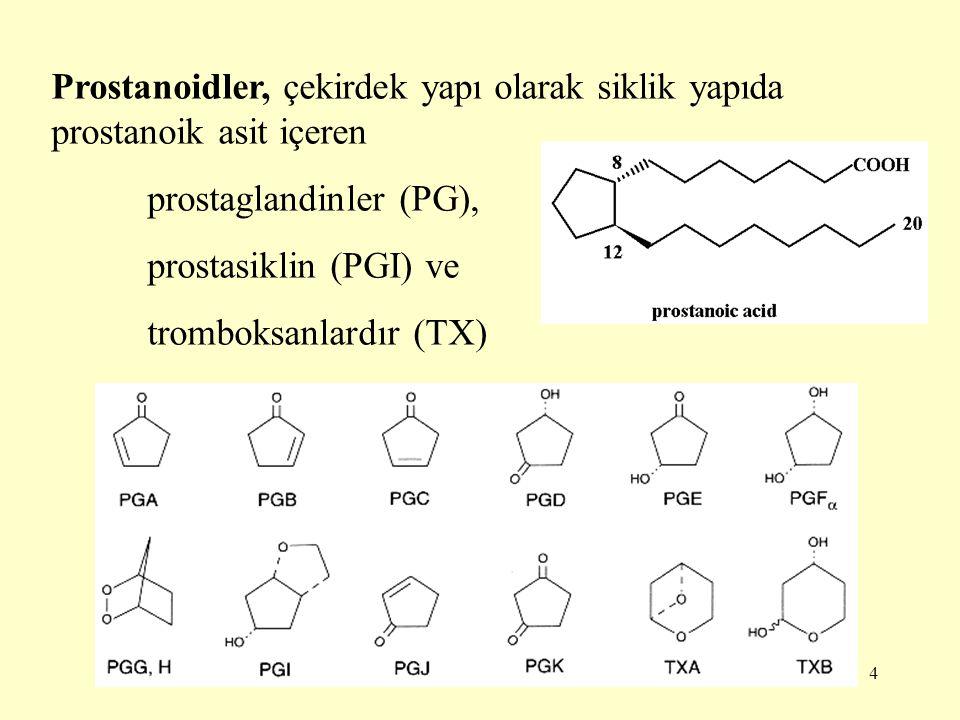 4 Prostanoidler, çekirdek yapı olarak siklik yapıda prostanoik asit içeren prostaglandinler (PG), prostasiklin (PGI) ve tromboksanlardır (TX)