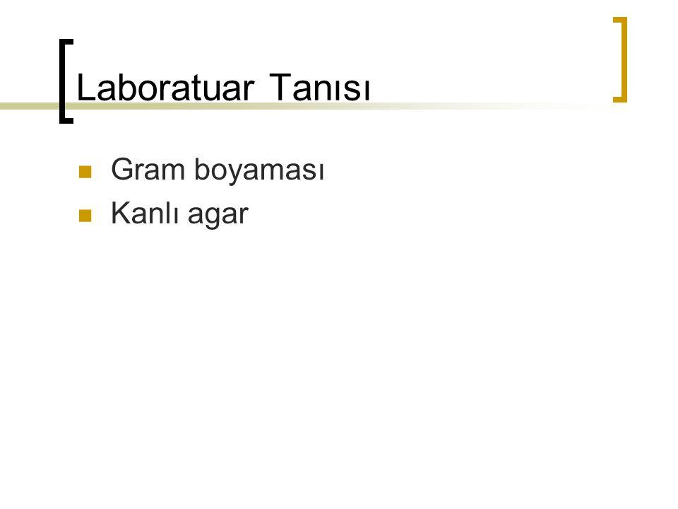 Laboratuar Tanısı Gram boyaması Kanlı agar