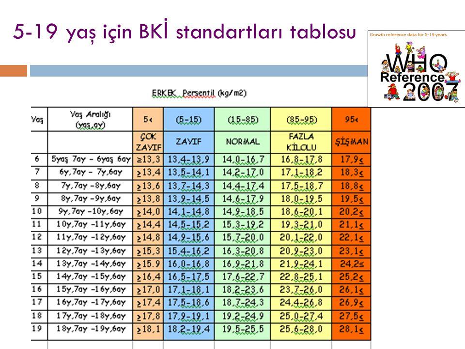 5-19 yaş için BK İ standartları tablosu
