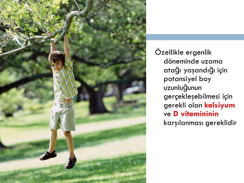 Özellikle ergenlik döneminde uzama ata ğ ı yaşandı ğ ı için potansiyel boy uzunlu ğ unun gerçekleşebilmesi için gerekli olan kalsiyum ve D vitamininin