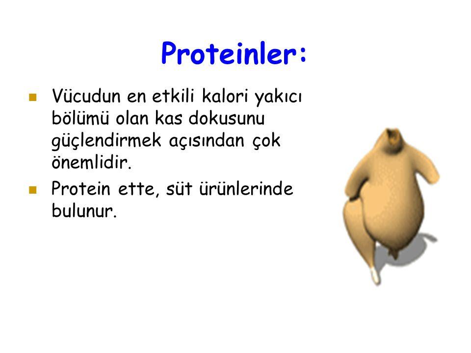 Proteinler: Vücudun en etkili kalori yakıcı bölümü olan kas dokusunu güçlendirmek açısından çok önemlidir. Protein ette, süt ürünlerinde bulunur.
