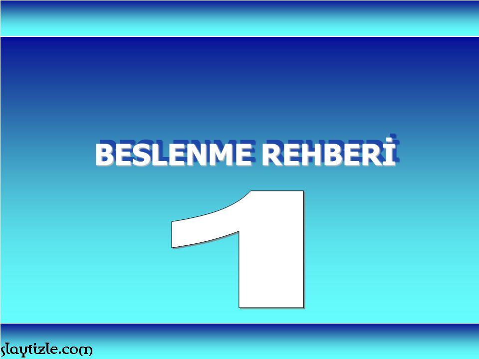 BESLENME REHBERİ