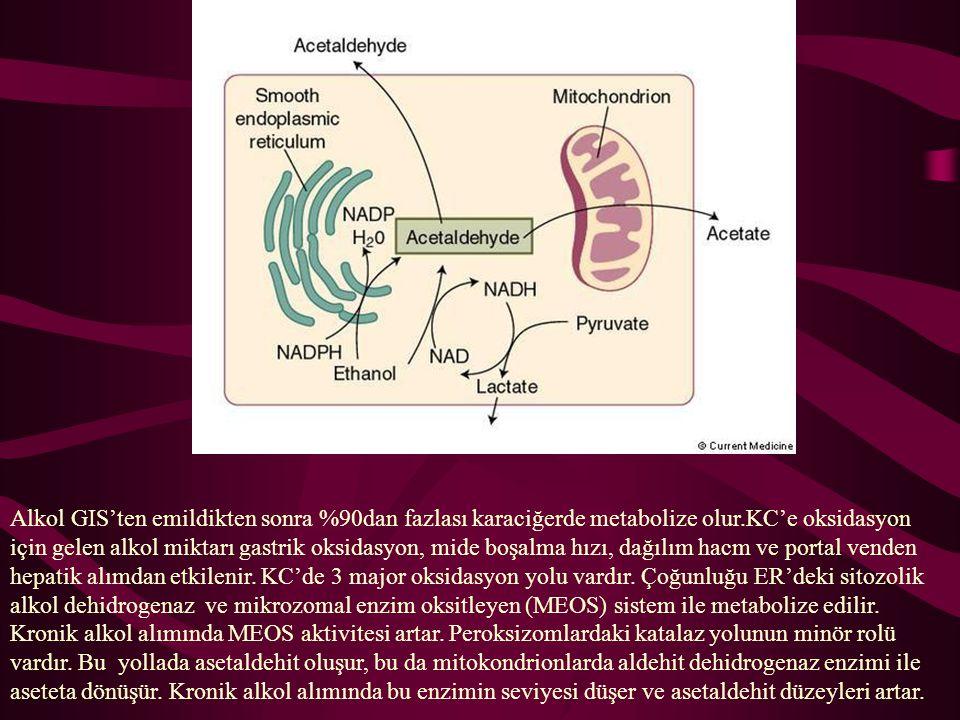 Alkol GIS'ten emildikten sonra %90dan fazlası karaciğerde metabolize olur.KC'e oksidasyon için gelen alkol miktarı gastrik oksidasyon, mide boşalma hı