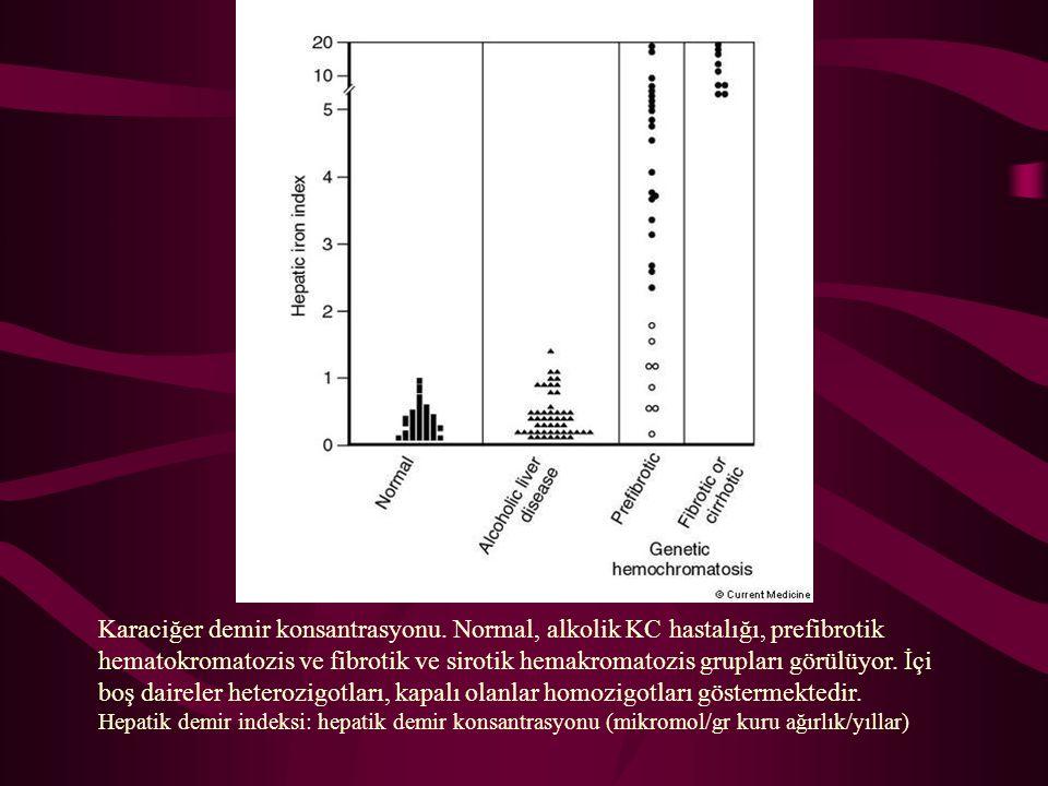 Karaciğer demir konsantrasyonu. Normal, alkolik KC hastalığı, prefibrotik hematokromatozis ve fibrotik ve sirotik hemakromatozis grupları görülüyor. İ