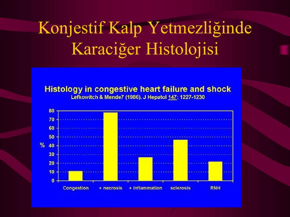 Konjestif Kalp Yetmezliğinde Karaciğer Histolojisi