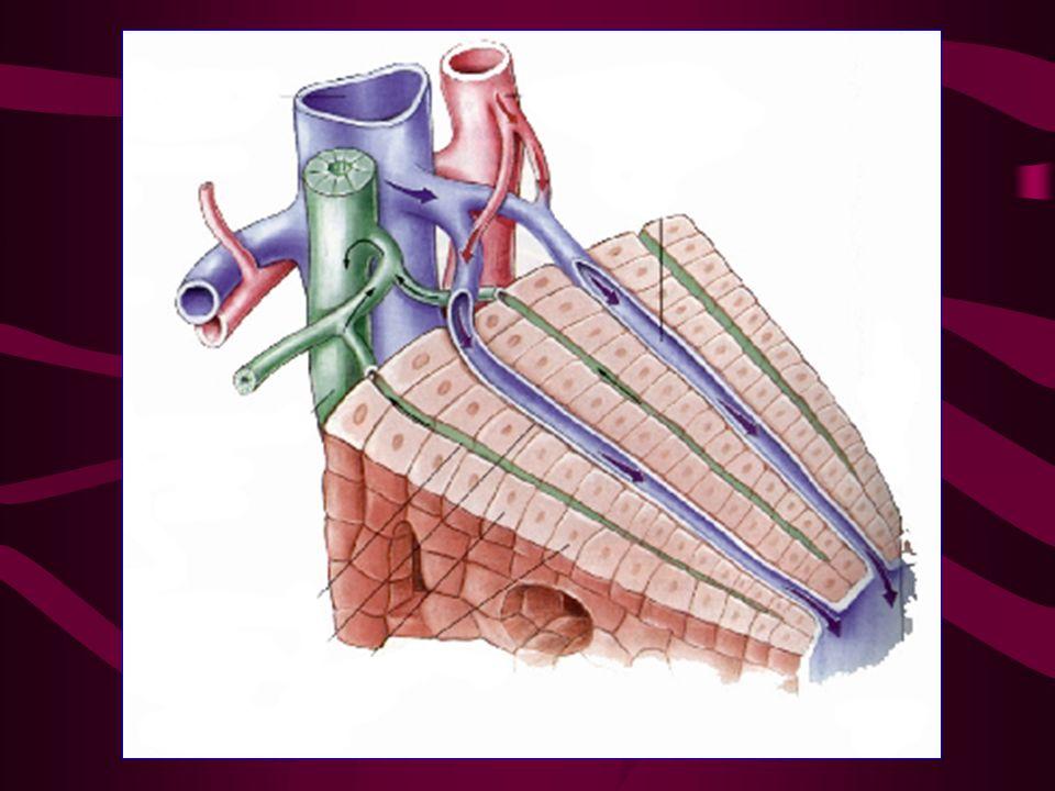 Tedavi 1 ünite flebotomi: 250 mg demir Htc düşene kadar haftada 1-2 kez flebotomi Haftada 1-2 kez flebetomi hematokrit %35'e düşene kadar yapılır.