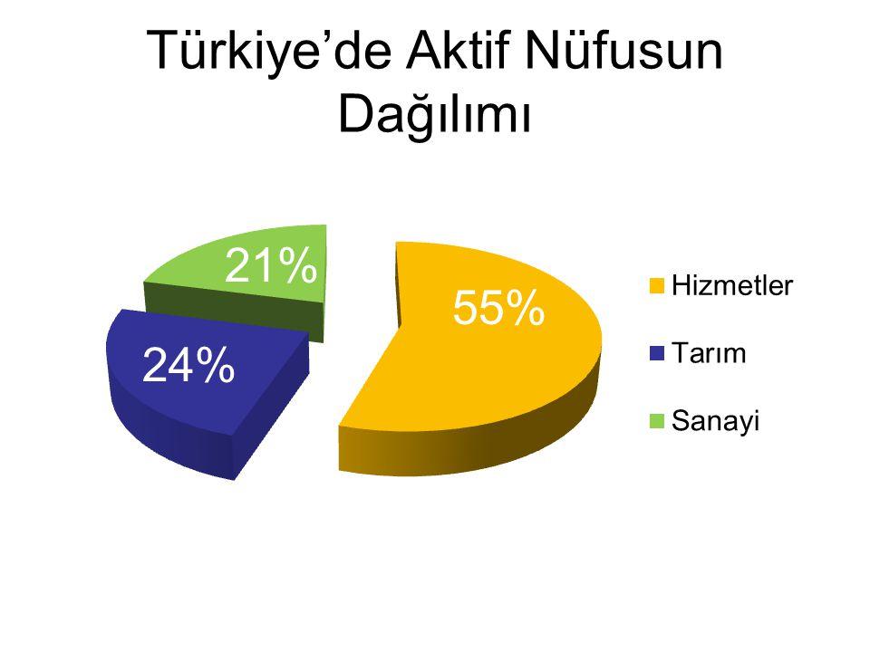 Türkiye'de Aktif Nüfusun Dağılımı