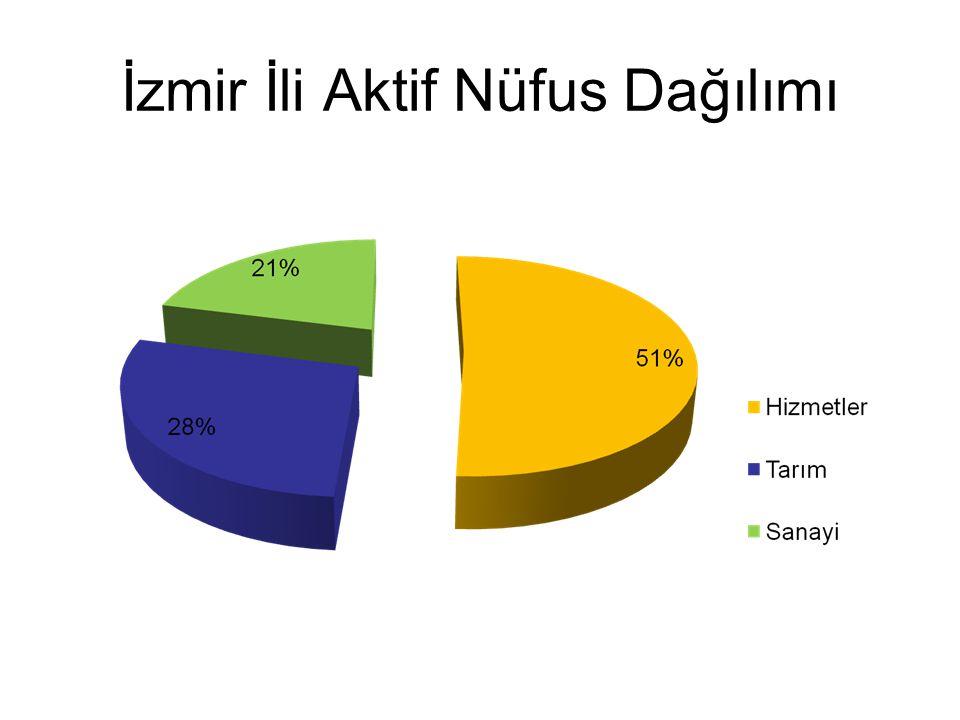 İzmir İli Aktif Nüfus Dağılımı